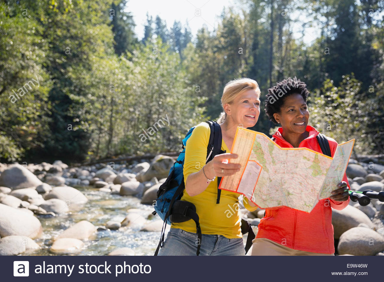 Women looking at trail map in sunny woods - Stock Image