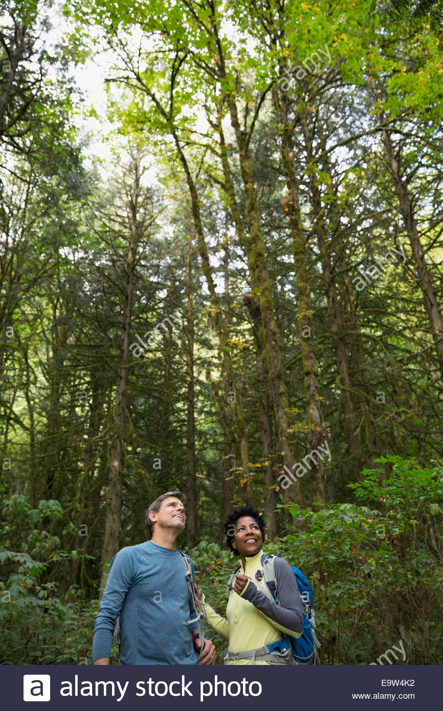 Couple looking up at trees in woods - Stock Image