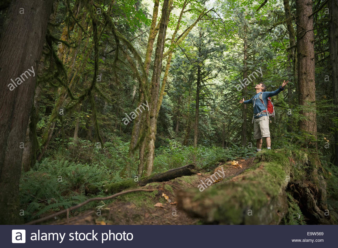 Man with arms outstretched on trail in woods - Stock Image