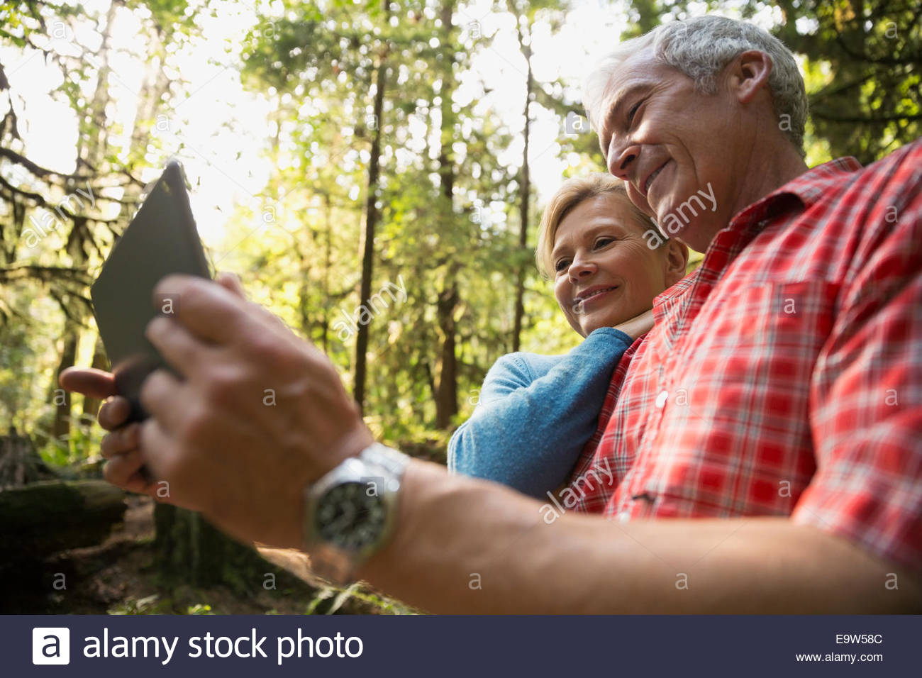 Couple using digital tablet in woods - Stock Image