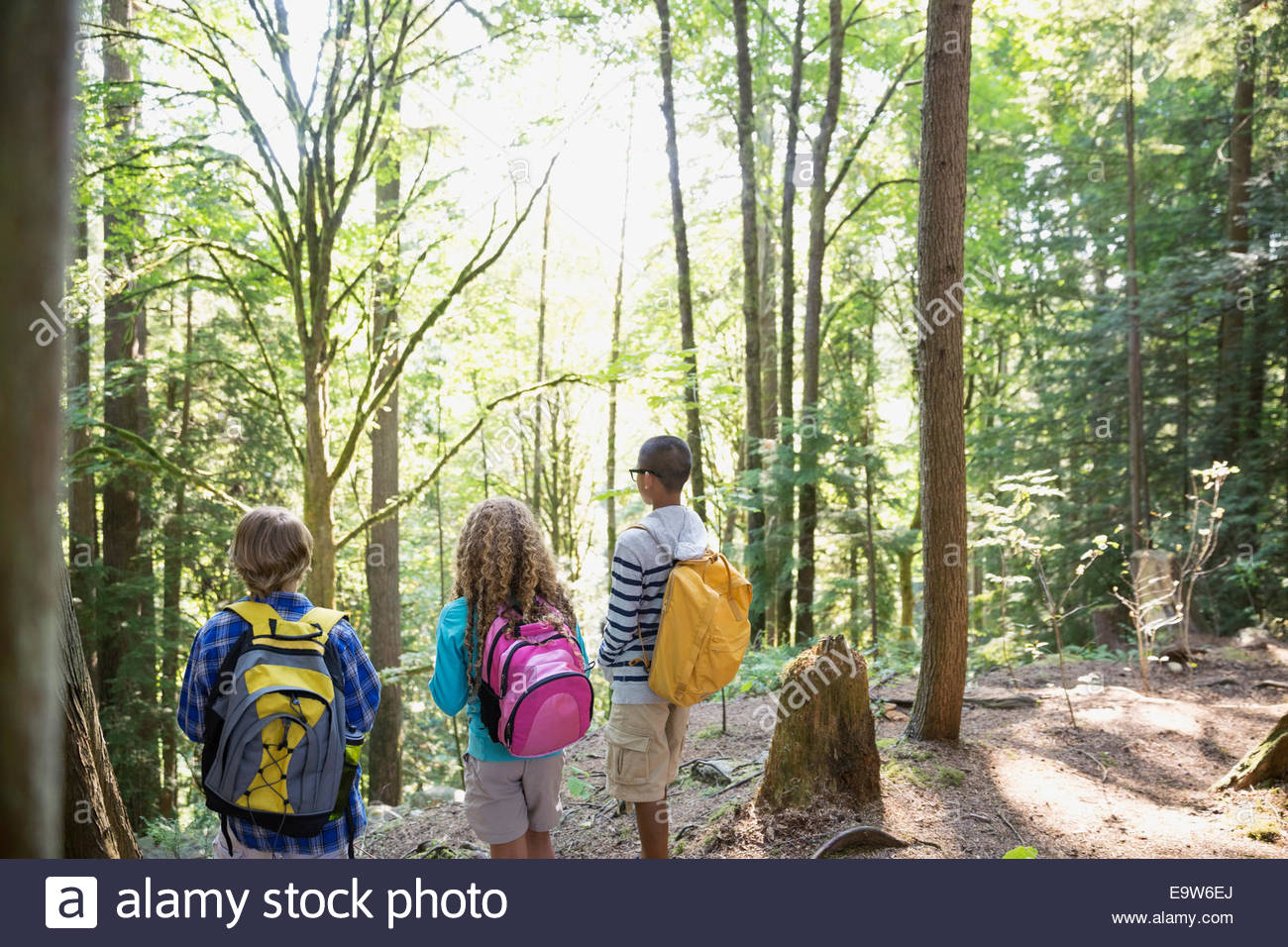 Boys and girl with backpacks hiking in woods - Stock Image