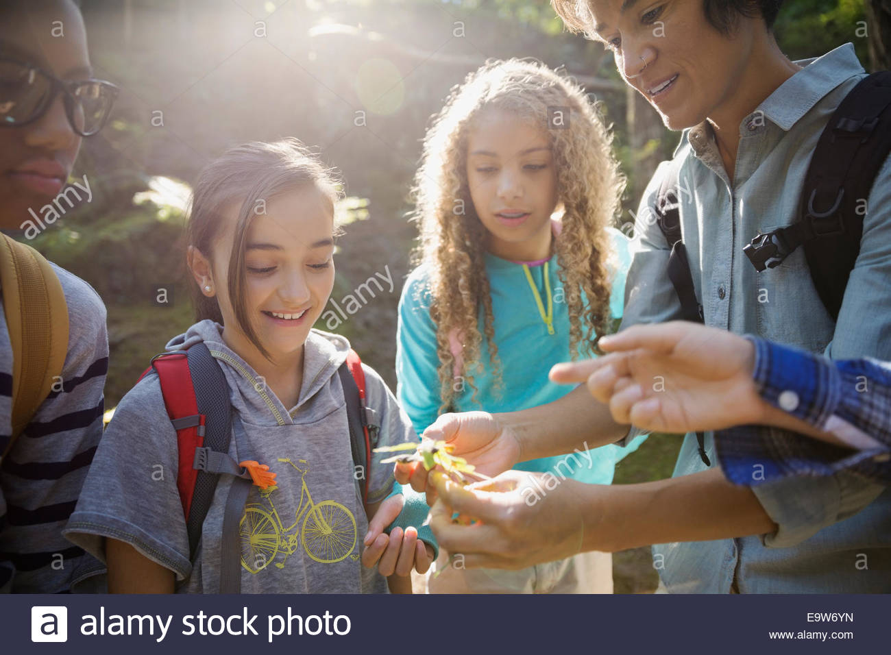 Teacher and children examining plant in woods - Stock Image