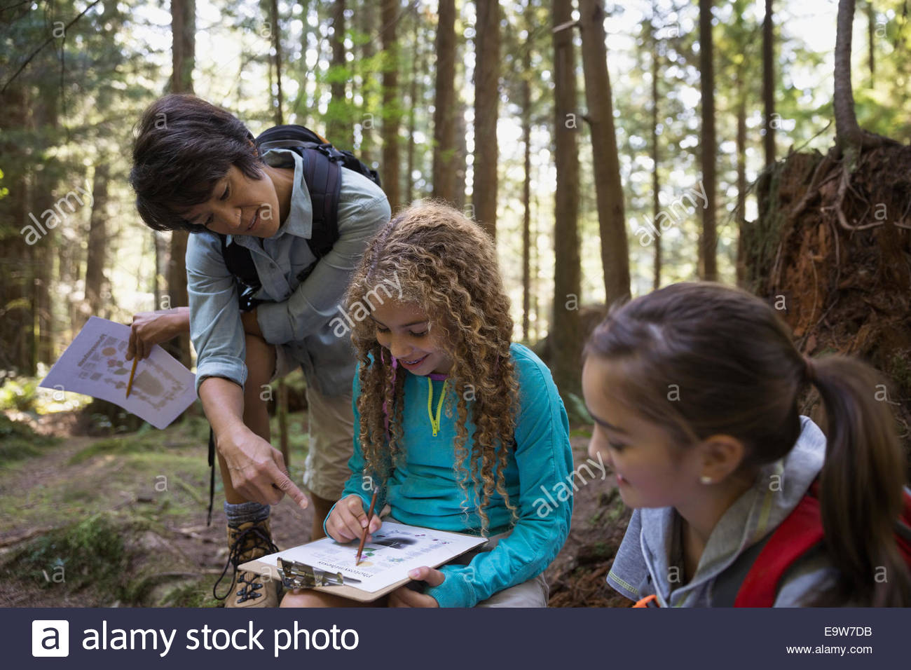 Teacher and children with clipboards in woods - Stock Image