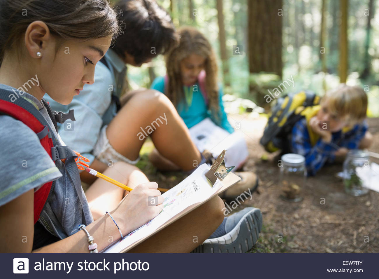 Children writing on clipboards in woods - Stock Image