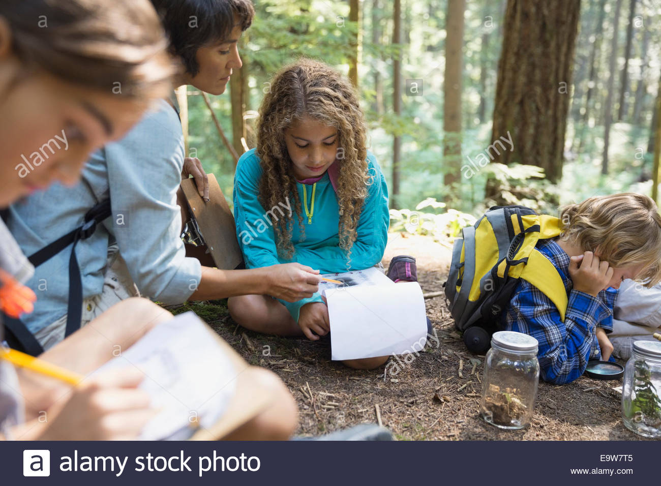 Teacher and children studying in woods - Stock Image