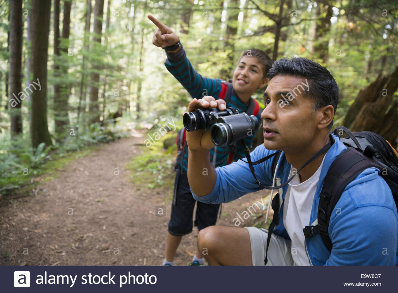 Father and son with binoculars in woods - Stock Image