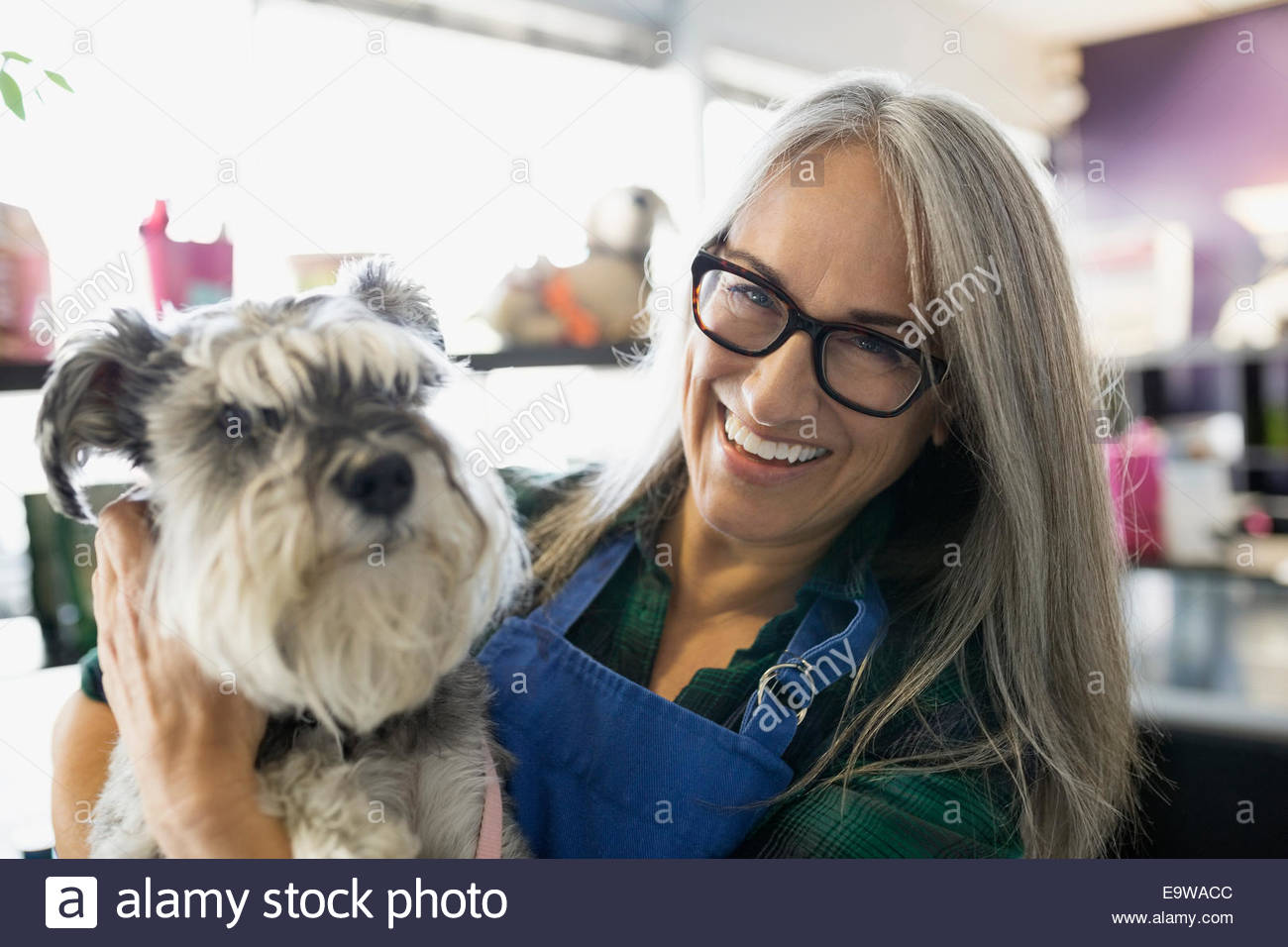 Portrait of smiling dog daycare owner with schnauzer - Stock Image