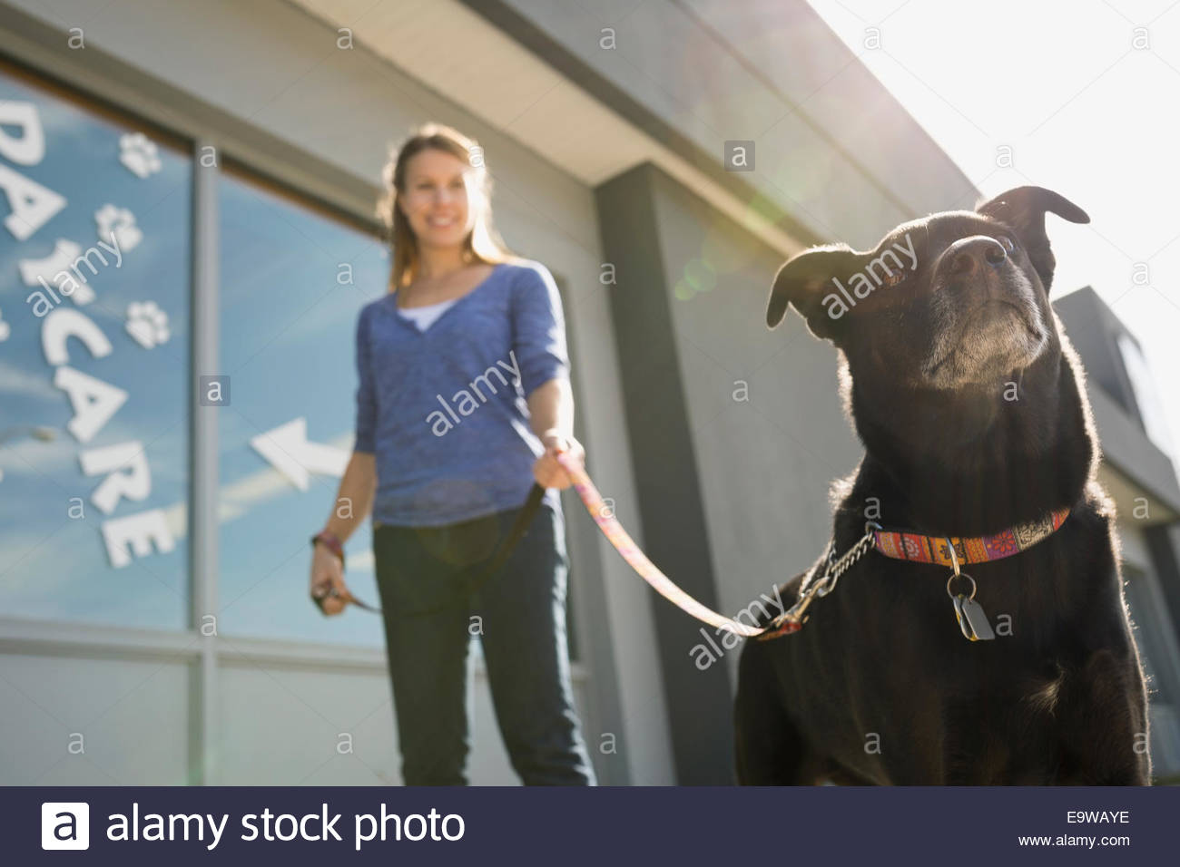Woman with dog outside dog daycare - Stock Image
