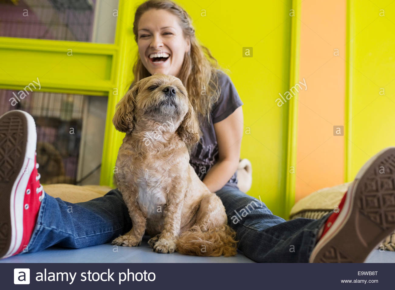 Laughing woman with dog - Stock Image