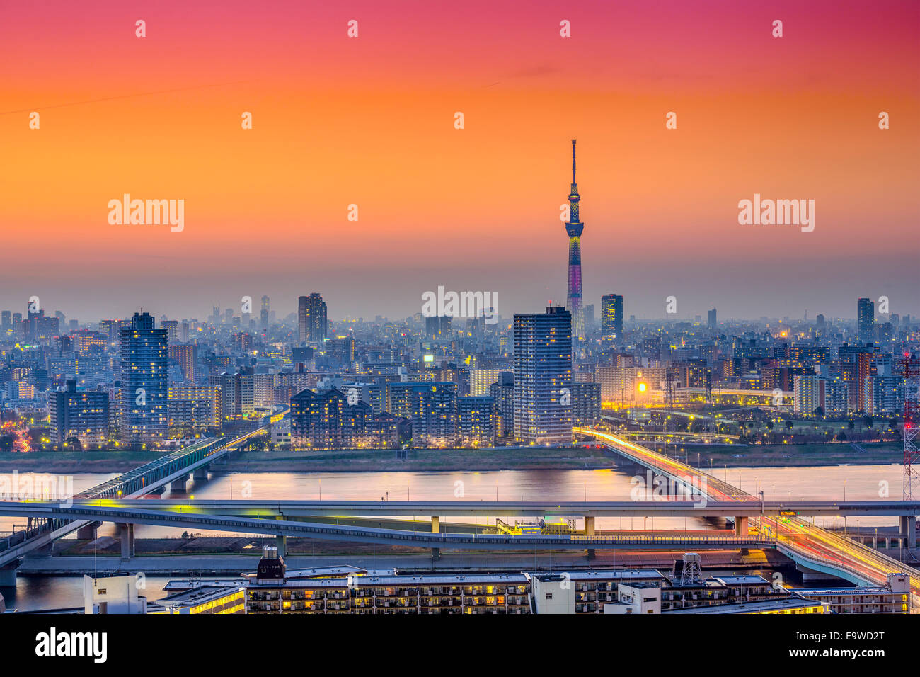 Tokyo, Japan city skyline at Sumida Ward. - Stock Image
