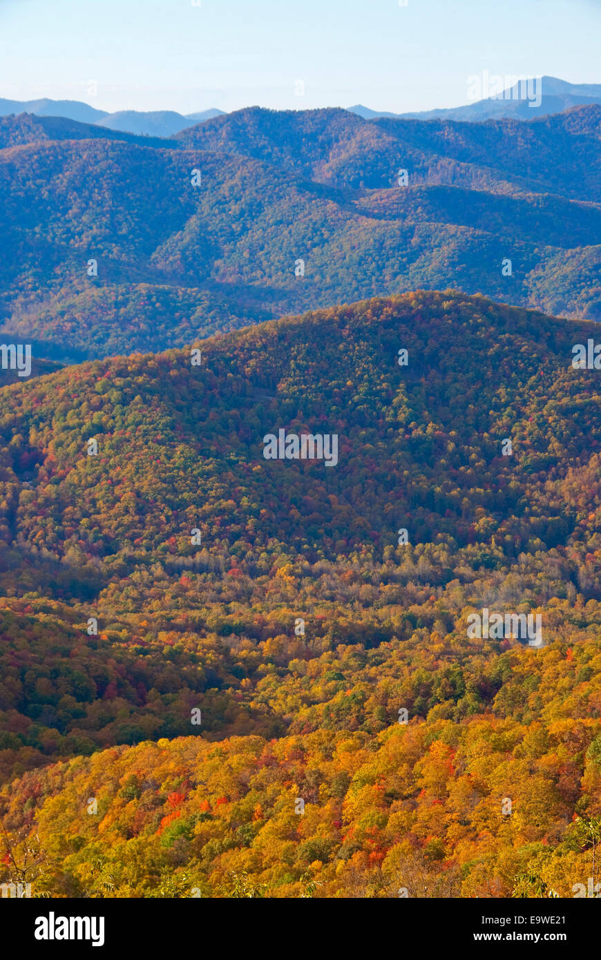 Autumn color from a Blue Ridge Parkway overlook in southern Appalchians near Asheville, North Carolina. - Stock Image