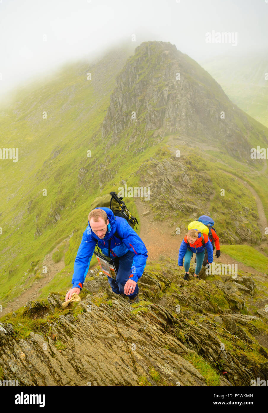 Walkers climbing Helvellyn  from Striding Edge in the Lake District - Stock Image
