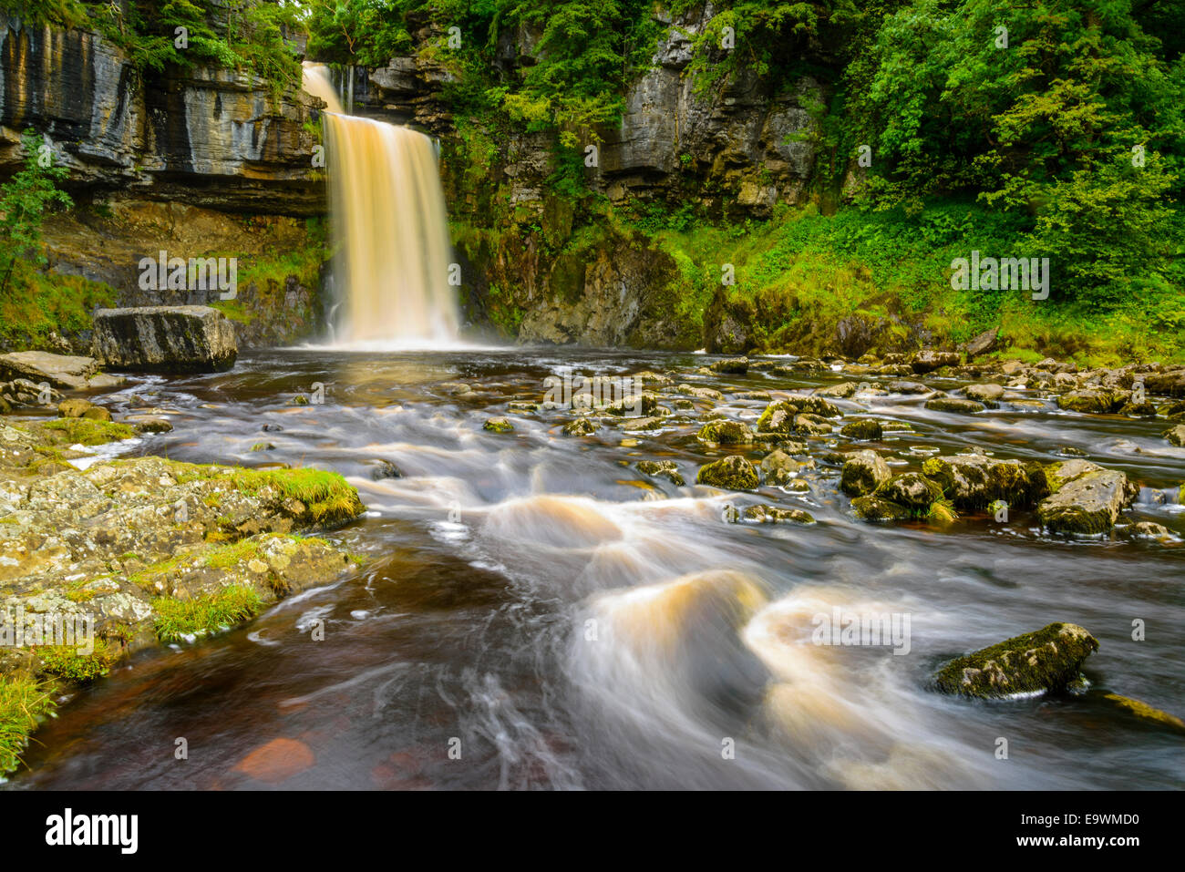 Thornton Force near Ingleton in the Yorkshire Dales National Park - Stock Image