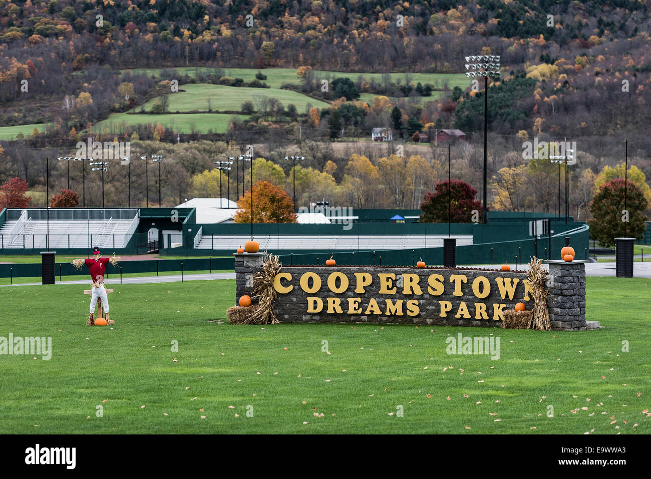 Dreams of Fields: A Cooperstown Tale