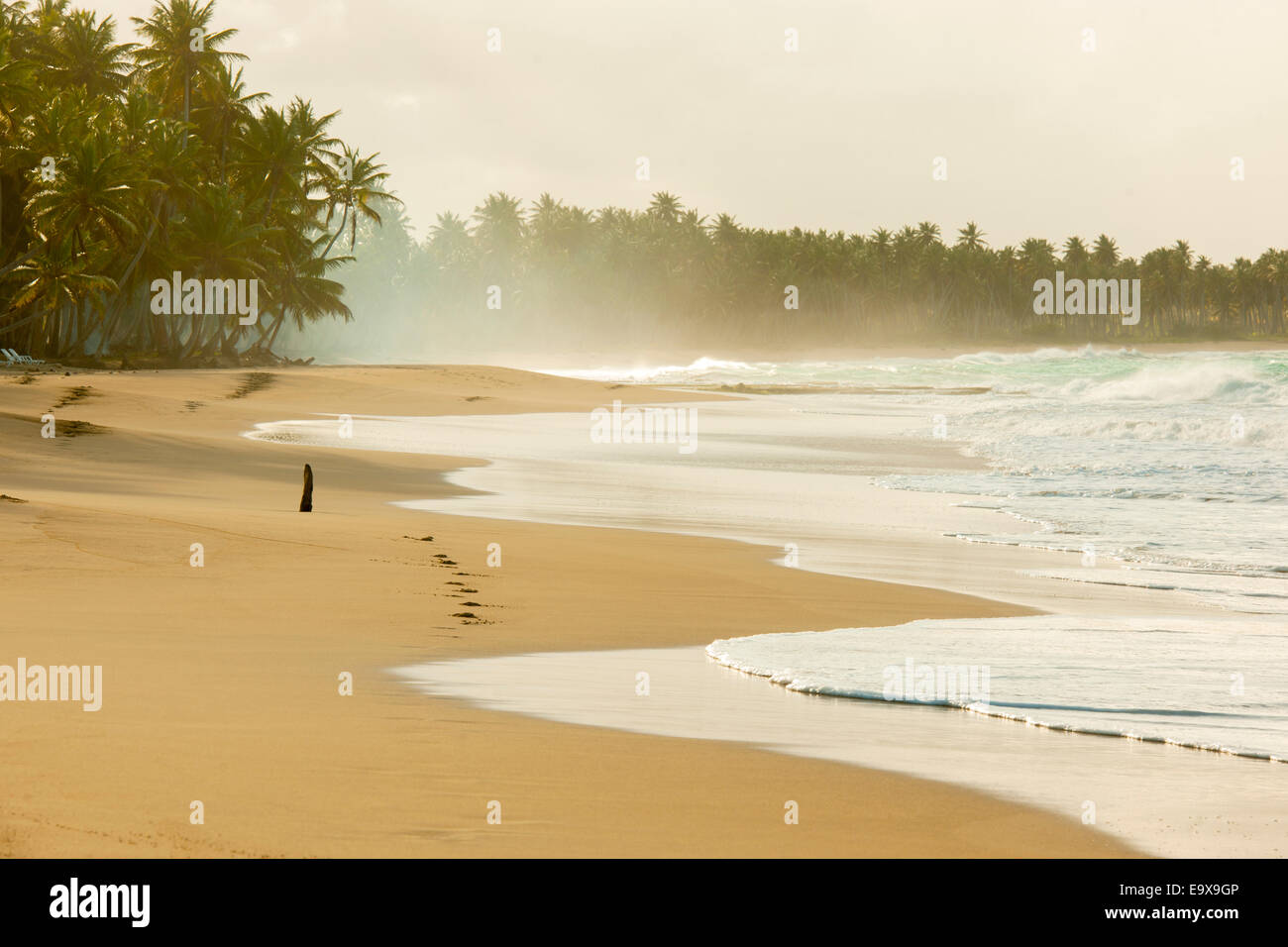 Dominikanische Republik, Osten, El Cedro, Strand Playa Limon Stock Photo