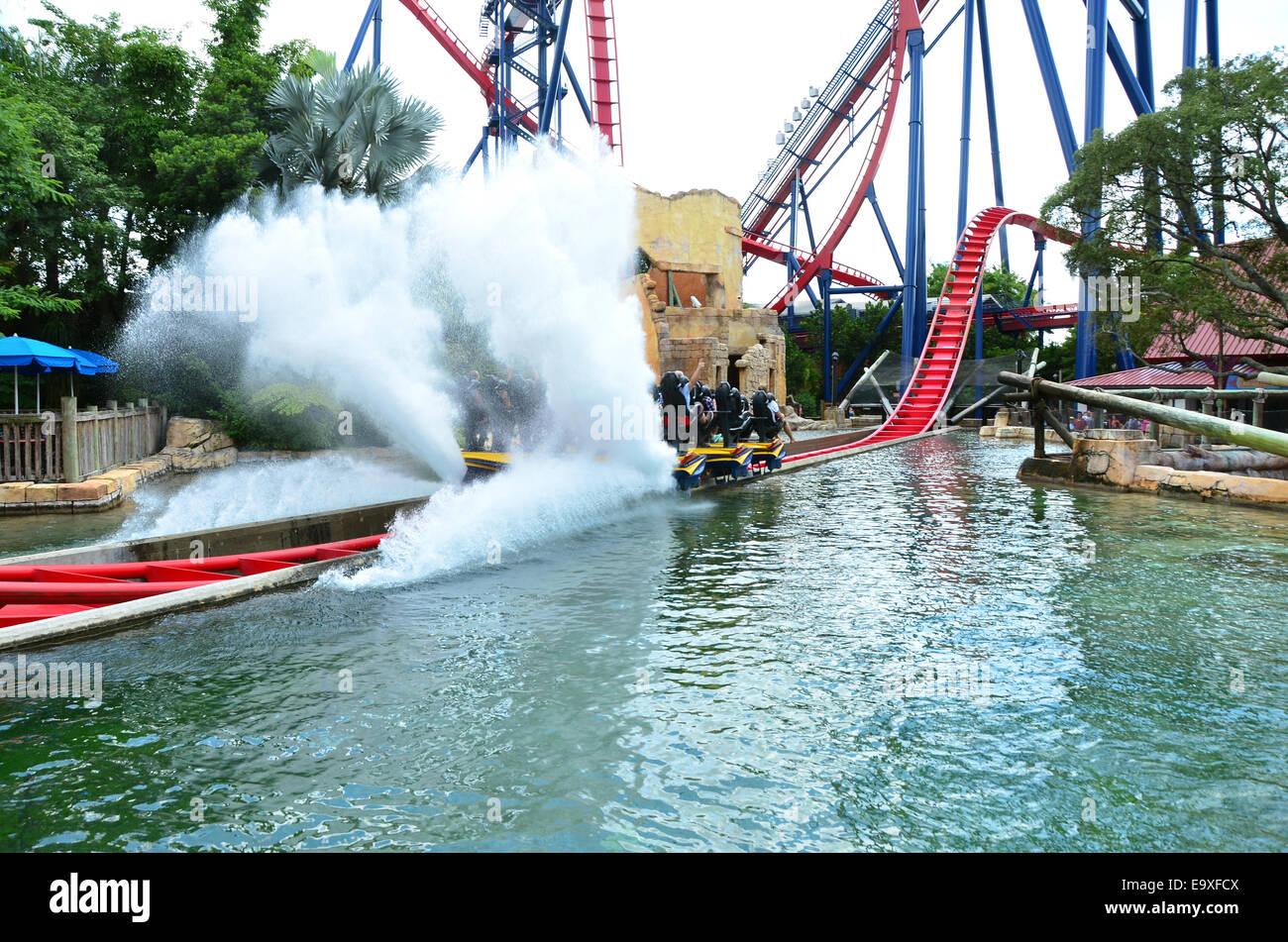 SheiKra Roller Coaster Ride At Busch Gardens, Tampa, Florida, USA