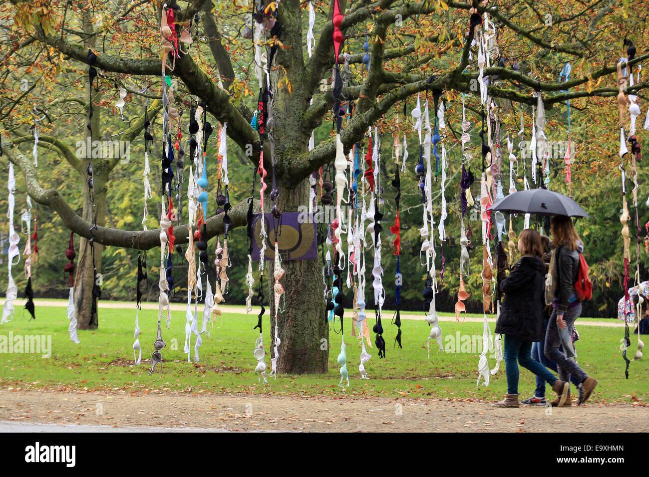 Bras are hunging on tree at Vondelpak during  International Day of the Girl Childin  manifestation on 11 Octuber, - Stock Image