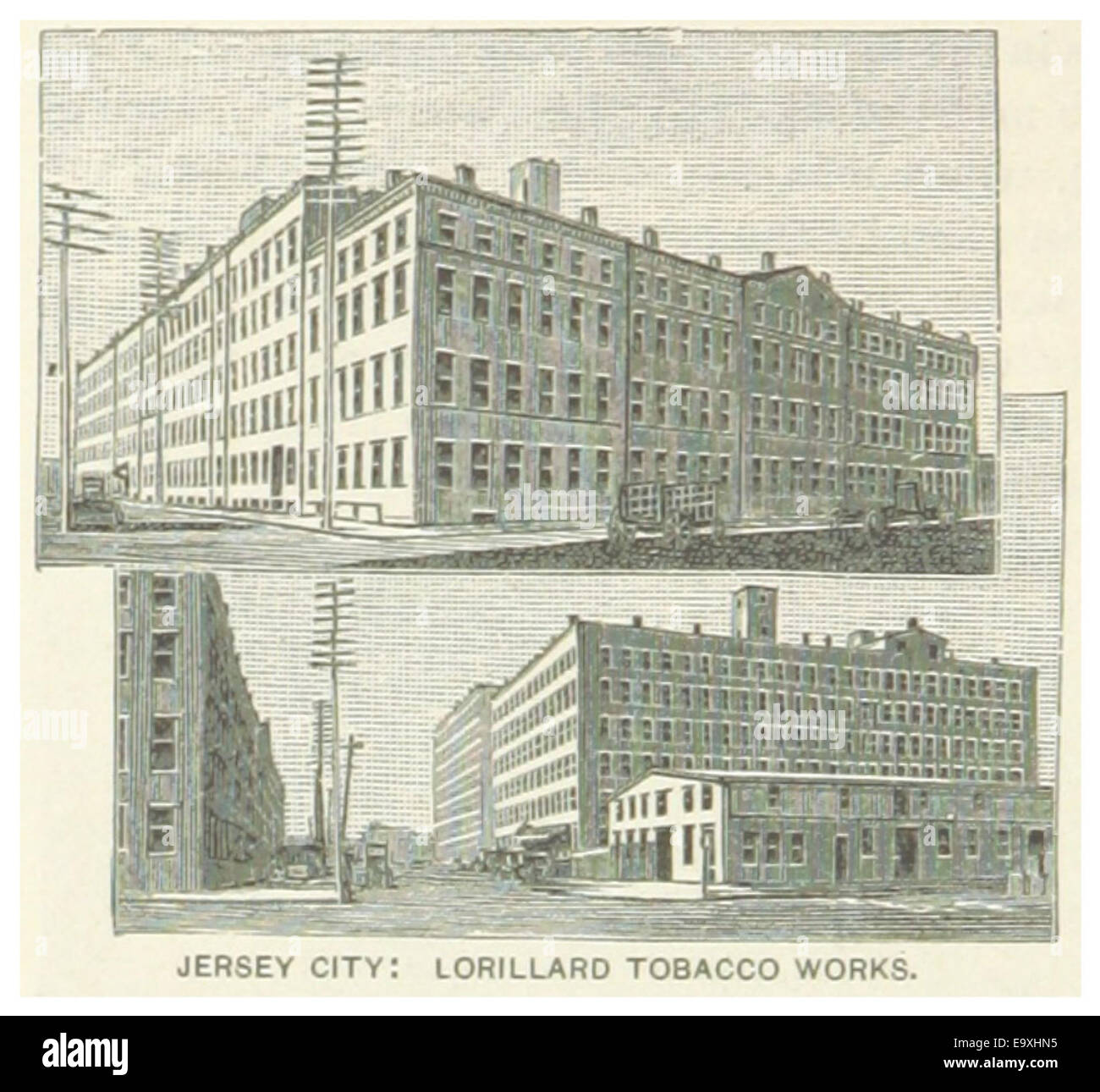 Jersey City Cut Out Stock Images Pictures Alamy