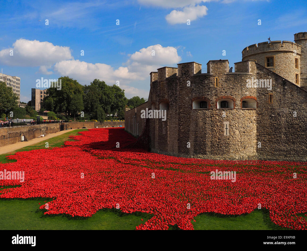 Red Poppies Art Installation at the Tower of London Moat in Commemoration of the First World War - Stock Image
