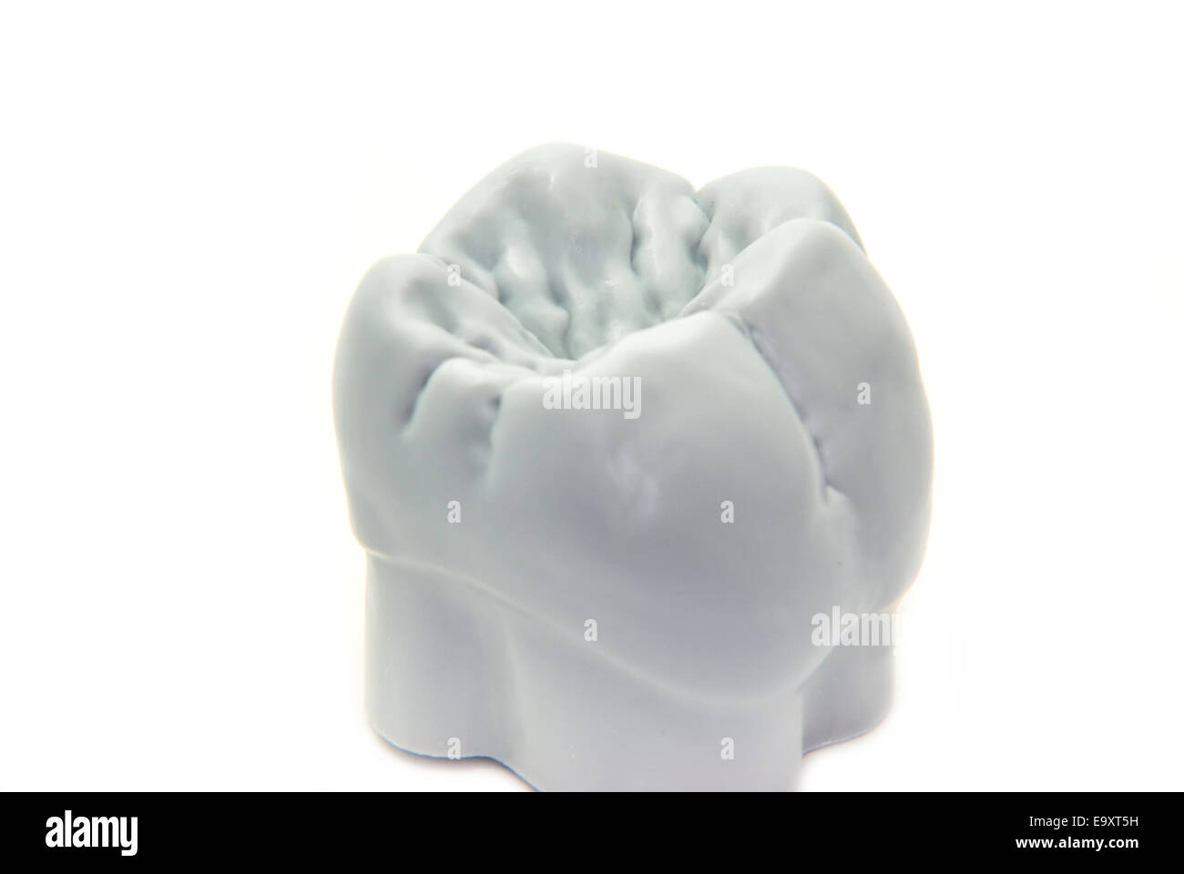Molar With Dentist Background Stock Photos & Molar With Dentist ...
