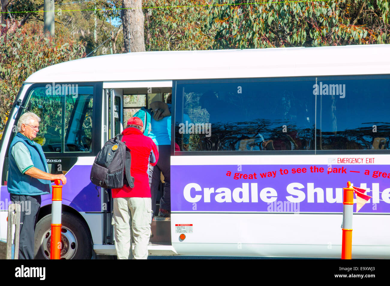 walkers boarding a bus at cradle mountain visitor centre to be taken to dove lake,cradle mountain lake st clair,tasmania,austral - Stock Image