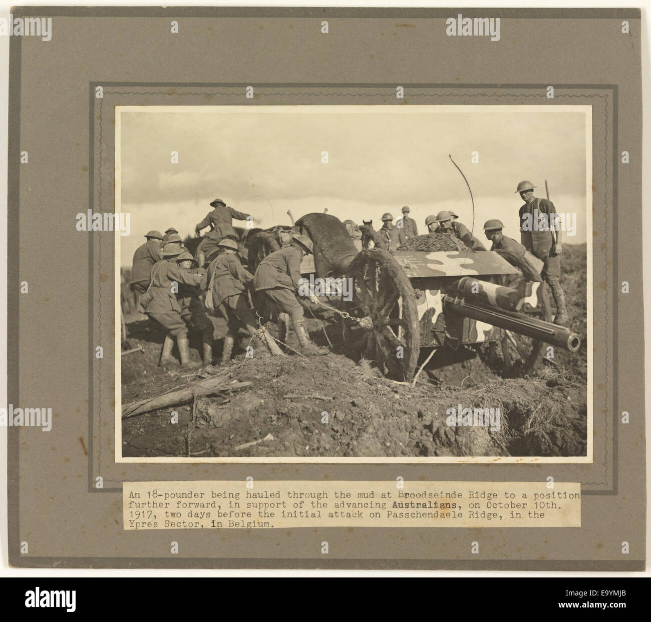 374d851c89bd0 18-pounder being hauled through the mud at Broodseinde Ridge ... two days  before the initial attack on Passchendaele Ridge