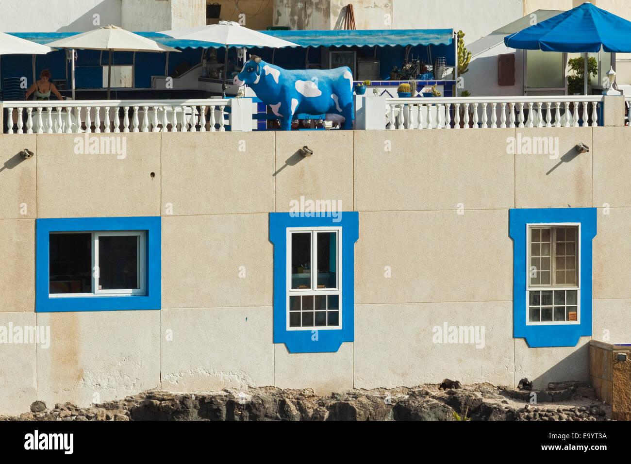 Popular Vaca Azul (Blue Cow) restaurant by harbour in this NW coast village; El Cotillo, Fuerteventura, Canary Islands, - Stock Image