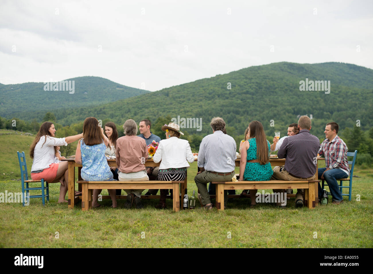 Family and friends making a toast at outdoor meal - Stock Image