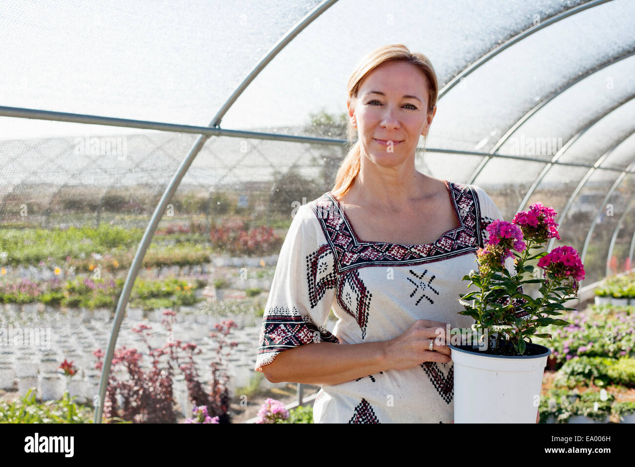 Portrait of mature female customer holding potted plant in plant nursery polytunnel - Stock Image