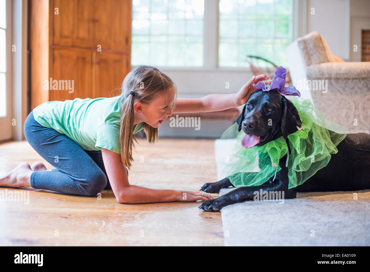Young girl playing dress up with pet dog - Stock Image