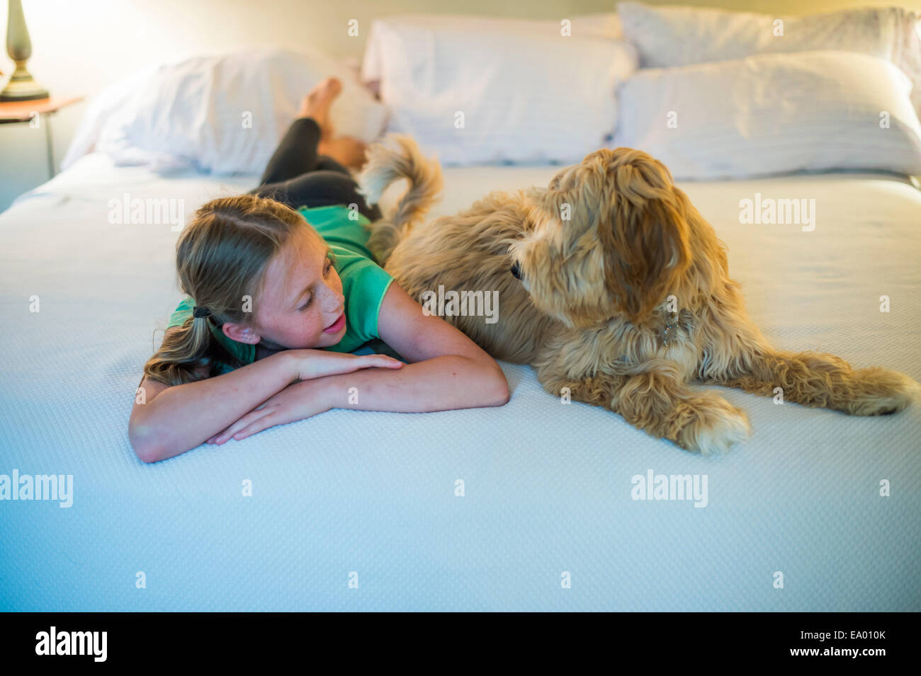 Young girl lying on bed next to dog - Stock Image