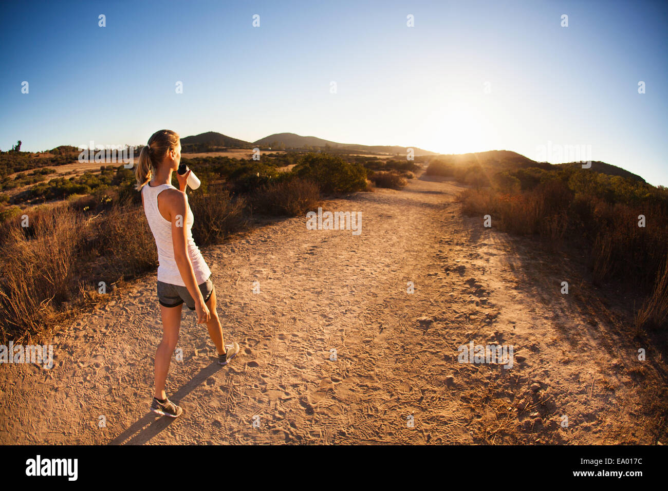 Young female jogger on path, drinking, Poway, CA, USA - Stock Image