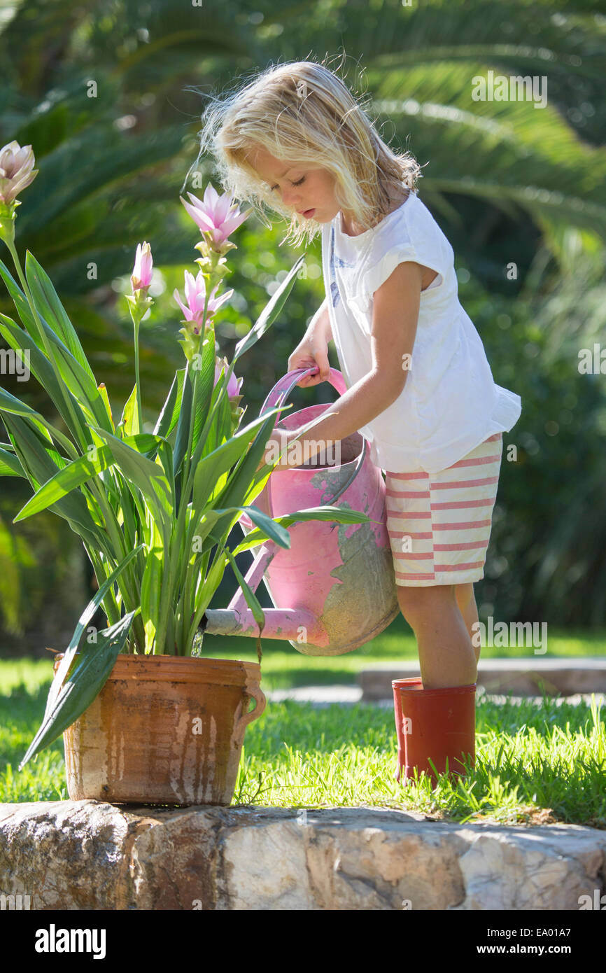 Girl watering garden plant - Stock Image