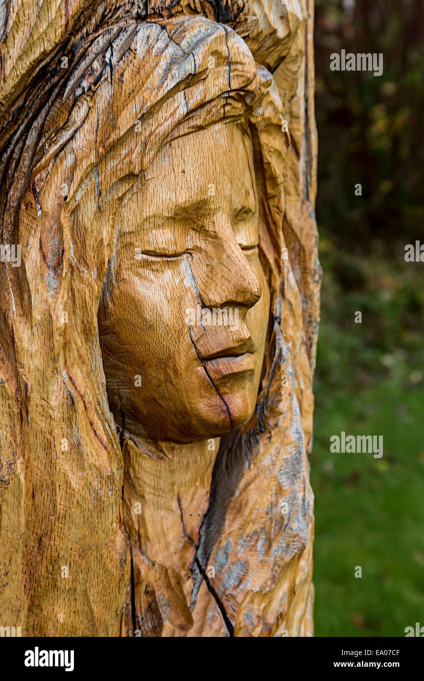 Carved wooden face in park, Pentrefoelas, Conwy, North Wales, UK - Stock Image