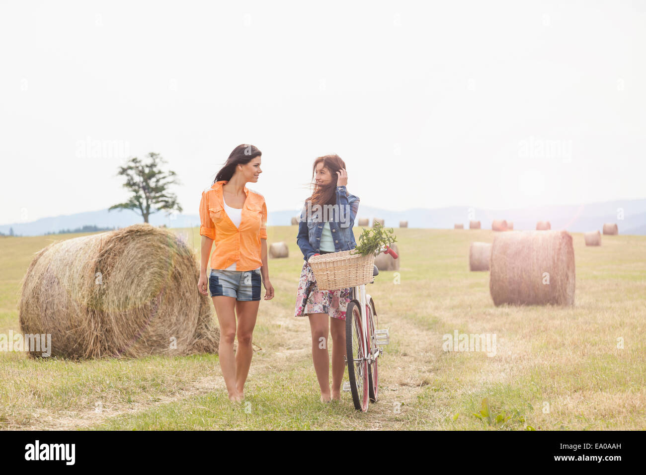 Friends with bicycle walking on field, Roznov, Czech Republic - Stock Image