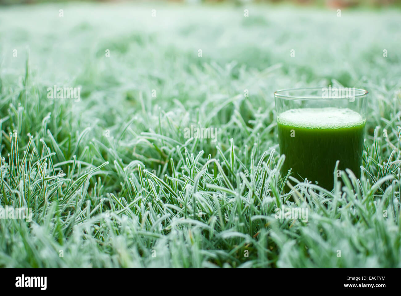 healthy green detox juice Stock Photo