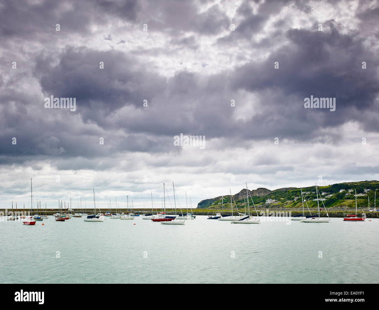 Large group of boats anchored in harbor, Howth, Dublin Bay, Republic of Ireland Stock Photo