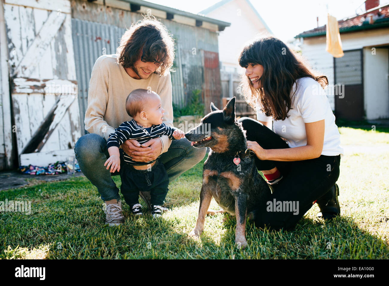 Baby boy and pet dog meeting in garden Stock Photo