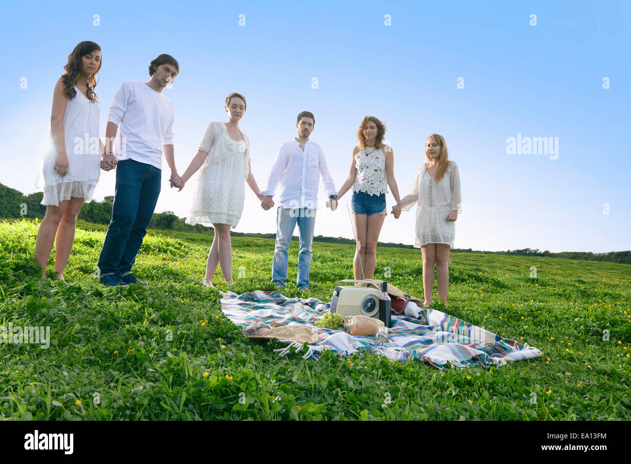 Portrait of six young adult friends holding hands in field - Stock Image
