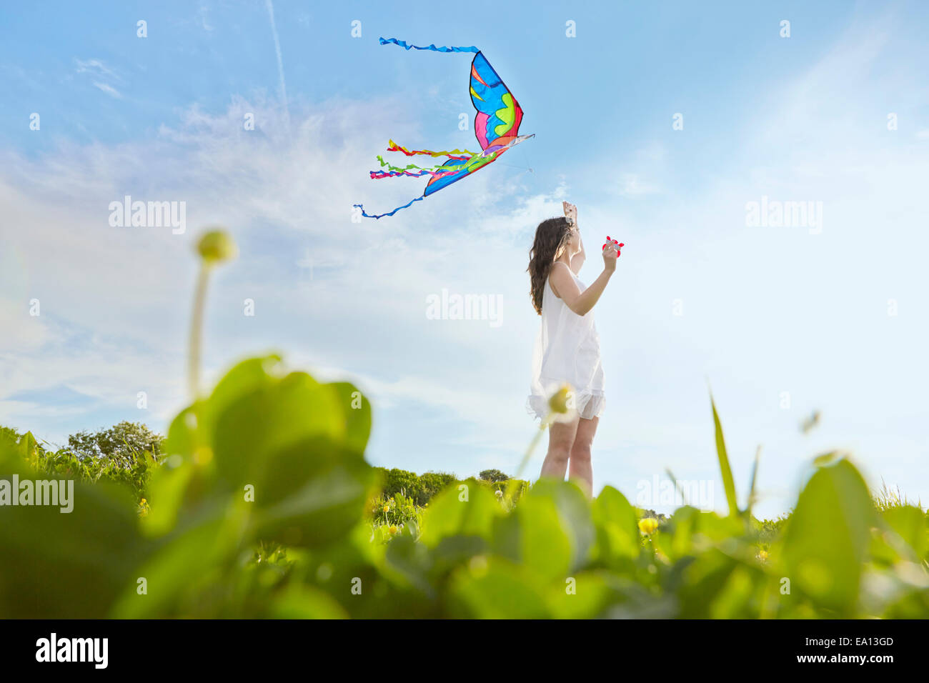 Surface level view of young woman flying a kite in field - Stock Image
