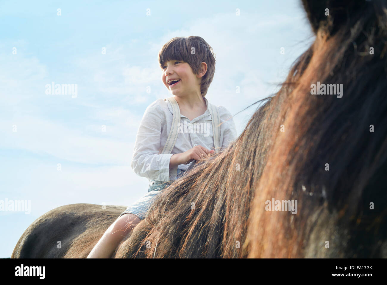 Close up cropped shot of boy on horse - Stock Image