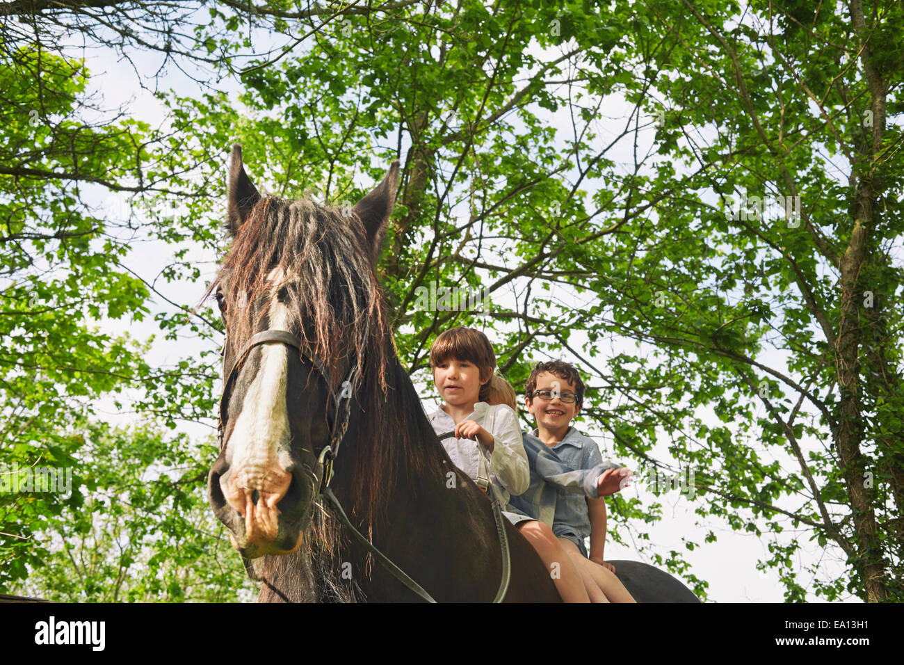 Low angle view of three boys riding on horse - Stock Image