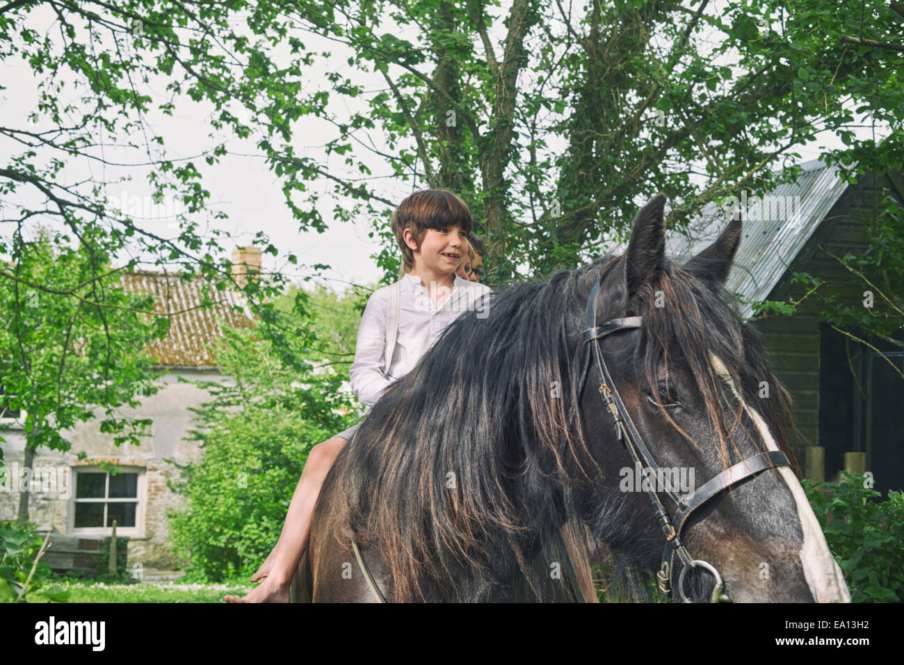 Three boys riding on horse at farm - Stock Image