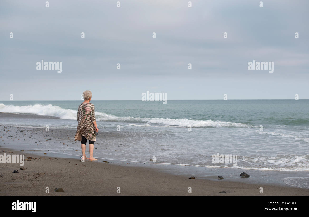 Rear view of senior woman gazing out to sea, Dana Point, California, USA - Stock Image