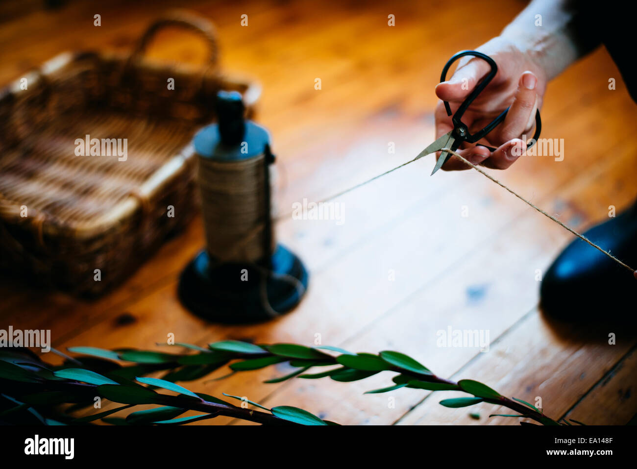 Woman working on plant cuttings - Stock Image