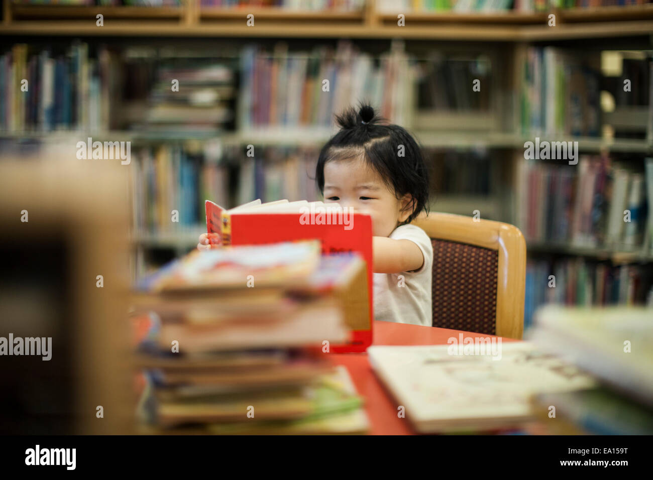 One year old baby girl reading book in library - Stock Image