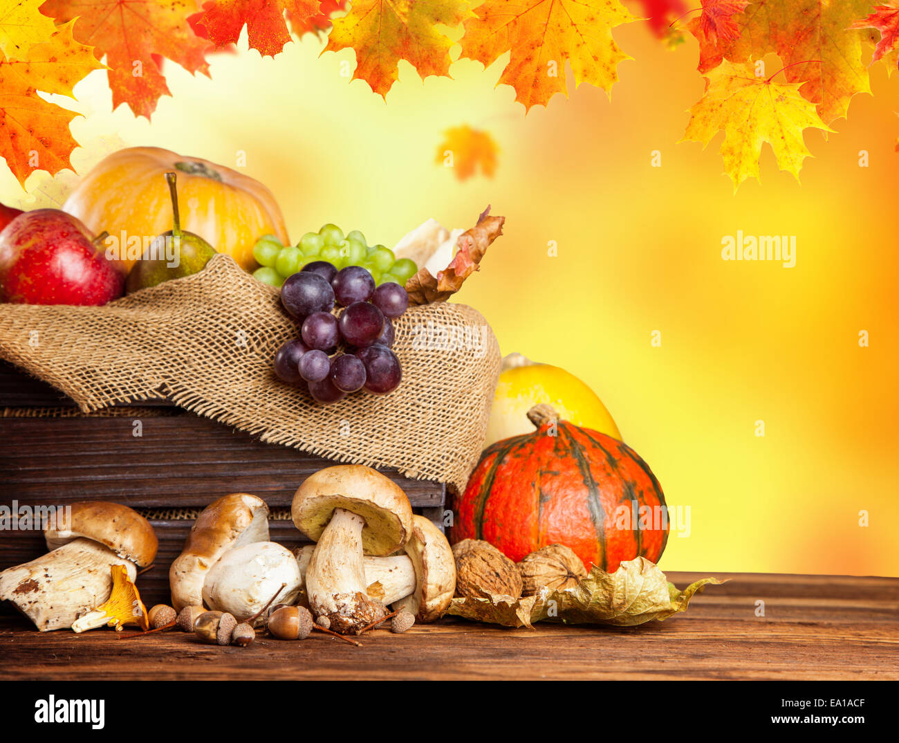 Seasonal harvested agriculture products in wooden box with blur background Stock Photo