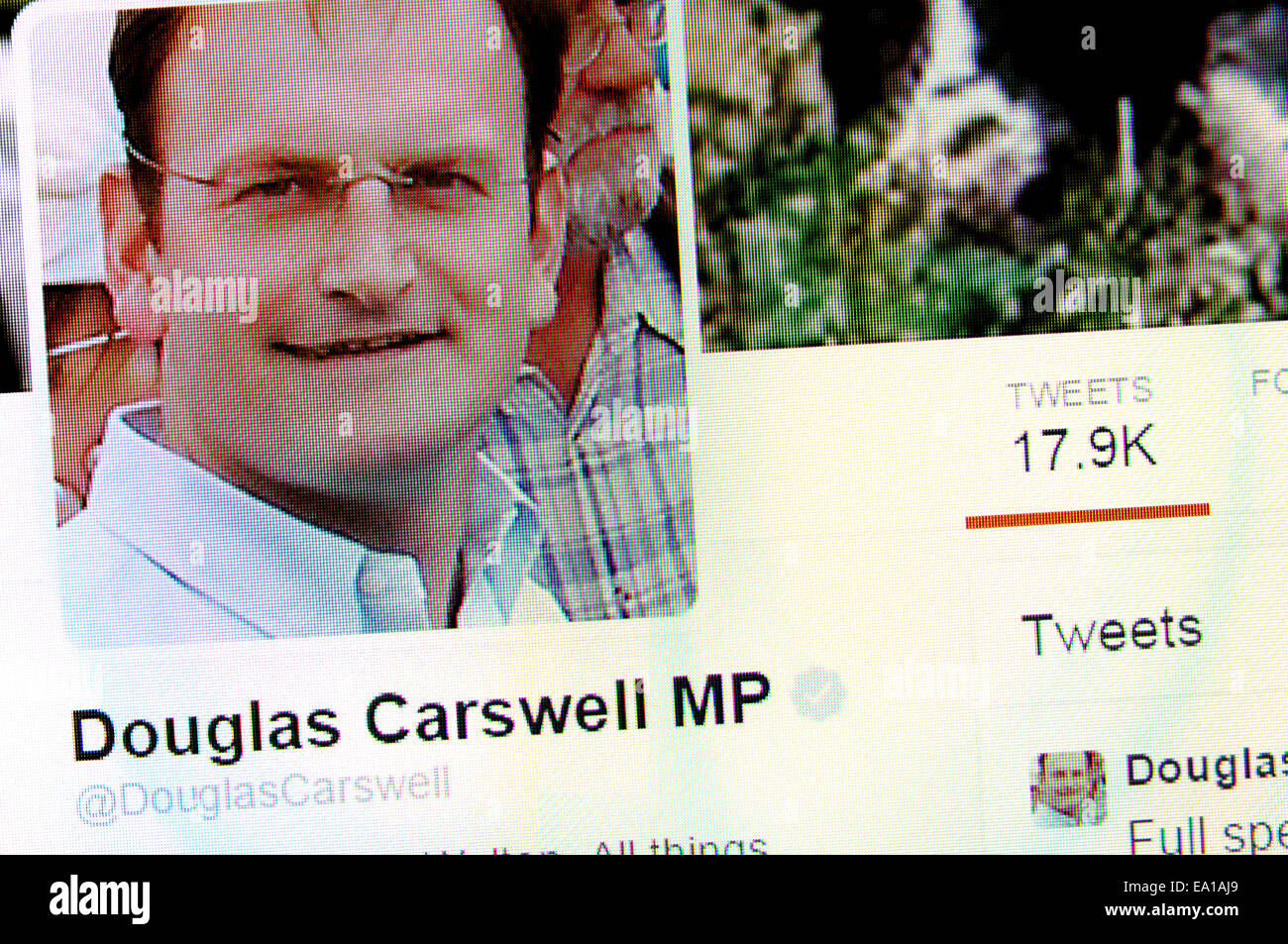 Douglas Carswell's Twitter account - screenshot of profile page - Stock Image