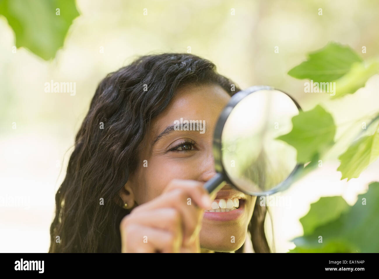 Woman examining leaves with magnifying glass - Stock Image