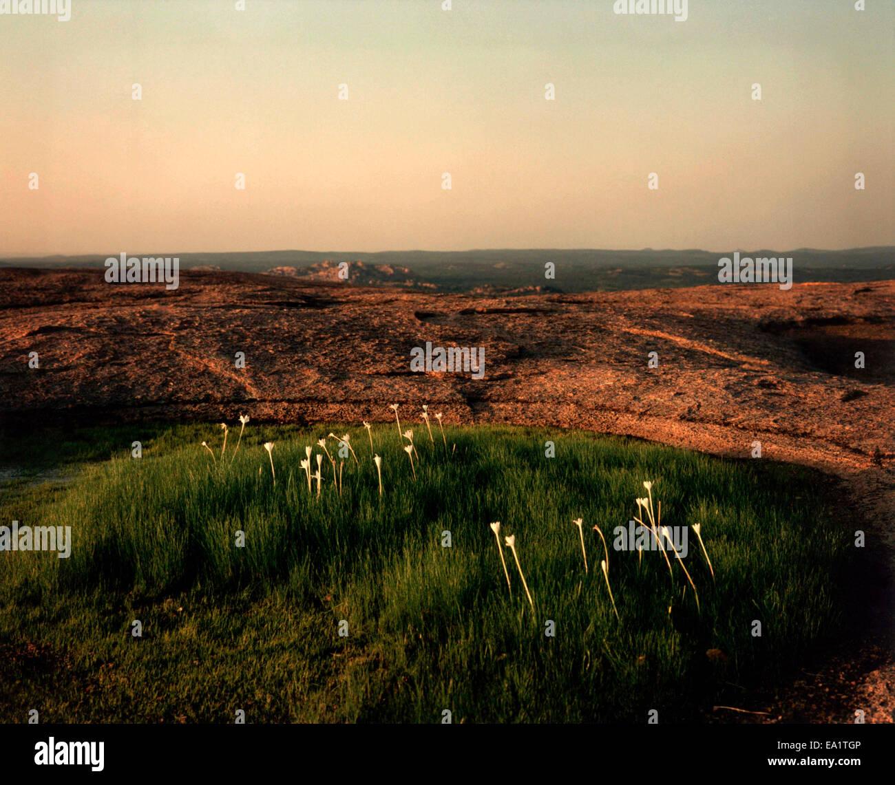 The Summitt of Enchanted Rock, Fredericksburg, Texas - Stock Image